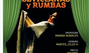 Clases de baile flamenco en El Palco del Parlamento
