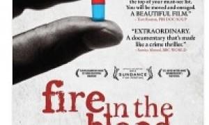 Filmoteca Regional de Murcia - Fin de semana 24 y 25 octubre