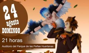 Musical El Gato y La Golondrina